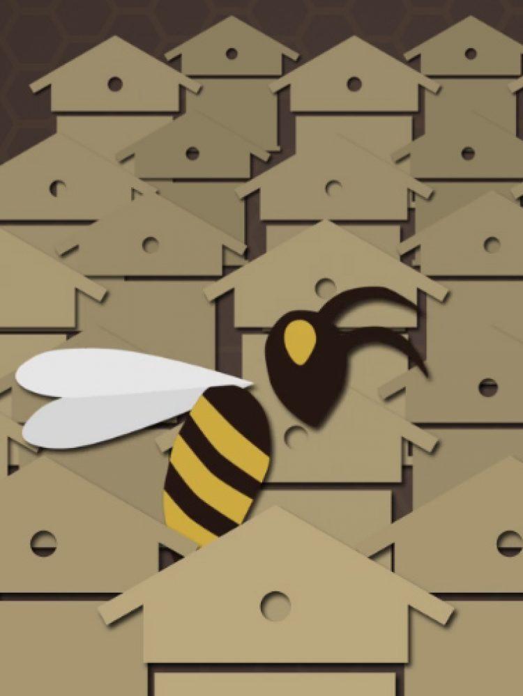 Le déclin des abeilles expliqué en 3 minutes