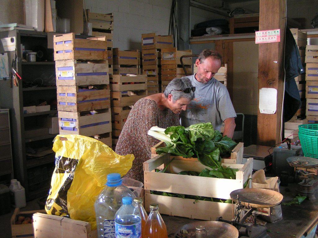 Préparation des paniers de légumes et fruits