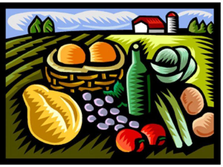 4 façons de consommer écolo